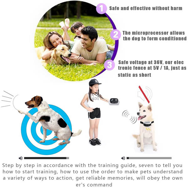 Outdoor Wireless Electronic Dog Fence System