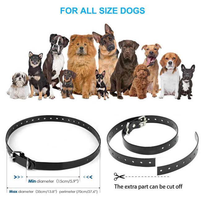 Dog Training Collar with Waterproof Rechargeable Remote